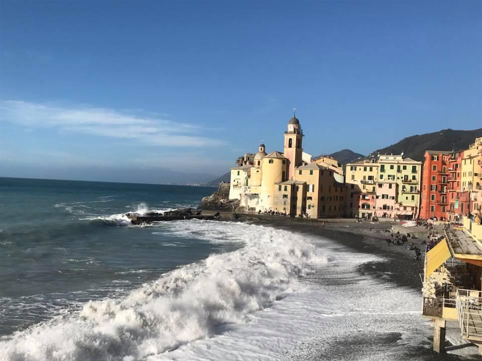 Italy - Liguria, Camogli